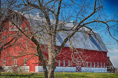 Photograph - Barn Beautiful II by Peggy Franz