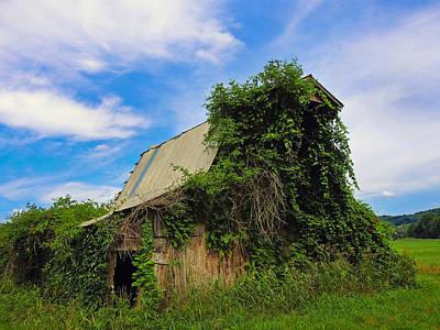 Photograph - Barn Dance by Skip Hunt