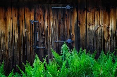 Photograph - Barn Door by Darylann Leonard Photography