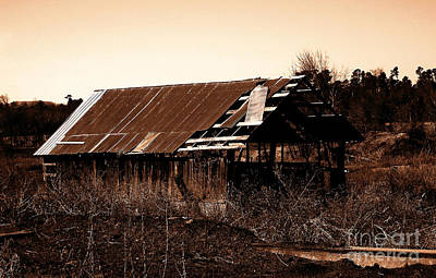 R. Mclellan Photograph - Barn Free by R McLellan