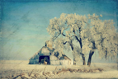 Country Chic Photograph - Winter Time Blues by Julie Hamilton