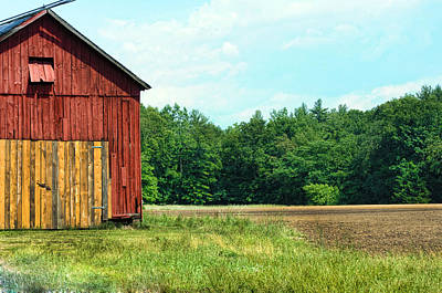 Photograph - Barn Green by Kenneth Feliciano