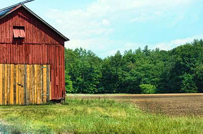 Photograph - Barn Green by Kenneth Feliciano