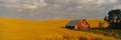 Barn In A Wheat Field, Palouse Art Print by Panoramic Images