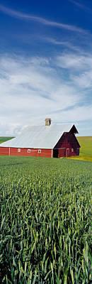 Barn In A Wheat Field, Washington Art Print