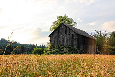 Photograph - Barn In Field by Athena Mckinzie