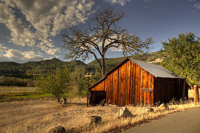 Photograph - Barn In Napa Region by Cliff Wassmann