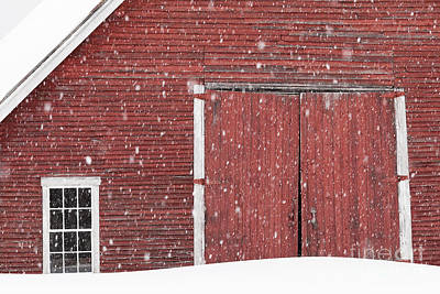 Photograph - Barn In Snowfall by Alan L Graham