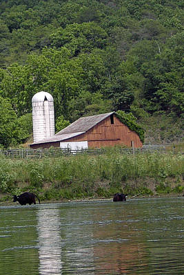 Photograph - Barn On River by Jeanne Donnelly
