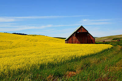 Photograph - Barn On The Palouse by Daniel Woodrum