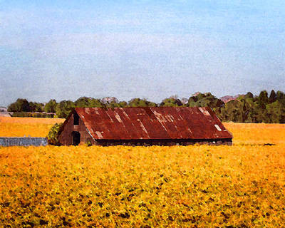 Photograph - Barn On The River Road by Timothy Bulone
