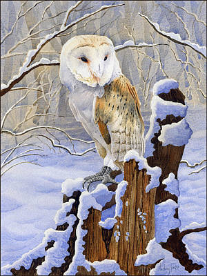 Barns In Snow Painting - Barn Owl In Snow by Anthony Forster