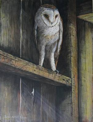 Trussed Painting - Barn Owl by Janice Kolano