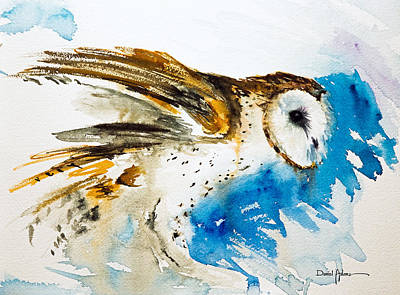 Painting -  Da145 Barn Owl Ruffled Daniel Adams by Daniel  Adams