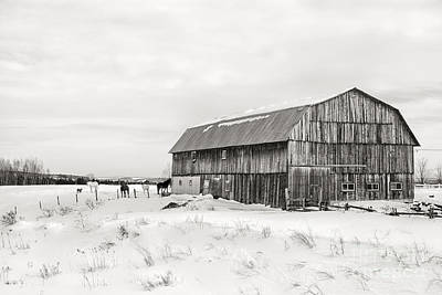 Old Farm Photograph - Barn Quebec Province In  Black And White by Jane Rix