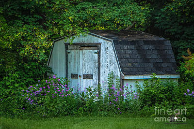Photograph - Barn Shed by Grace Grogan