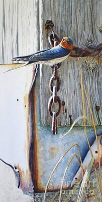 Barn Swallow Painting - Barn Swallow by Greg and Linda Halom