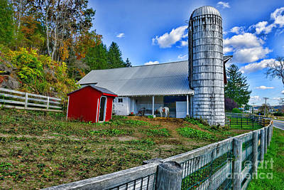 Country Scene Photograph - Barn - The Old Horse by Paul Ward