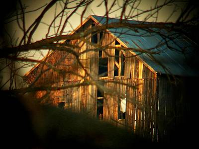 Barn Thru The Trees Art Print