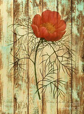 Barn Wood Texture Poppy Flower Botanical Art Art Print by Cranberry Sky