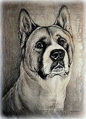 Wash Drawing - Barney The Dog by Andrew Read