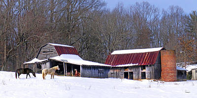 Photograph - Barns And Horses In Winter by Duane McCullough