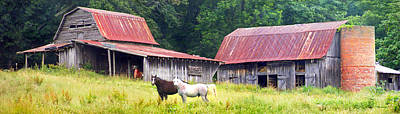 Photograph - Barns And Horses Near Mills River Nc by Duane McCullough