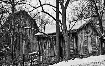 Art Print featuring the photograph Barns by JRP Photography