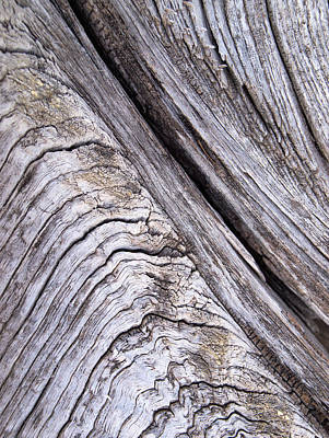 Photograph - Barnwood...weathered by Tom Druin