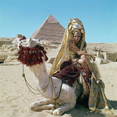 Pyramid Photograph - Baronne Van Zuylen On A Camel by Leombruno-Bodi