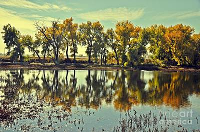 Barr Lake Reflection Art Print by Reza Mahlouji