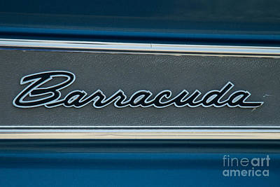 Photograph - Barracuda Emblem by Mark Dodd