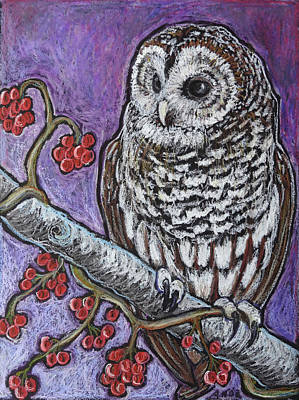 Barred Owl Wall Art - Painting - Barred Owl And Berries by Ande Hall