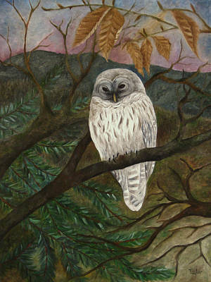 Painting - Barred Owl by FT McKinstry