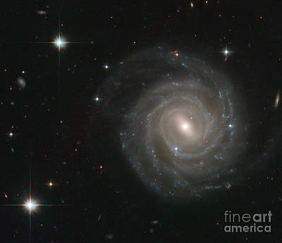 Heavenly Body Photograph - Barred Spiral Galaxy-ugc 12158 by Science Source