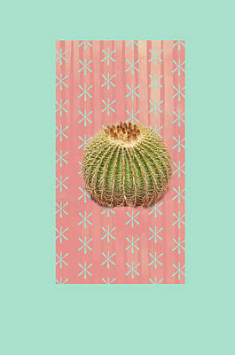 Succulents Painting - Barrel Cactus by Ramona Murdock