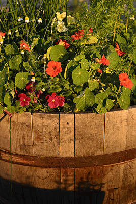 Photograph - Barrel Of Flowers by John Brink