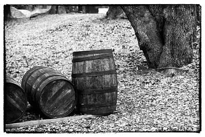 Barrels In The Woods Art Print by John Rizzuto