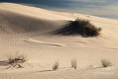 Photograph - Barren Dunes by Adam Jewell