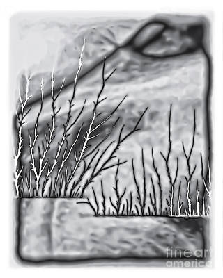 Photograph - Abstract Trees On Barren Landscape by Walt Foegelle