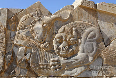 Ancient Persia Photograph - Bas Relief Carving Of A Lion Hunting A Bull At Persepolis In Iran by Robert Preston