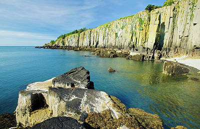 Photograph - Basalt Rock Cliffs, Bay Of Fundy  Brier by Dave Reede