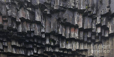Photograph - basaltic columns of Svartifoss Iceland by Rudi Prott