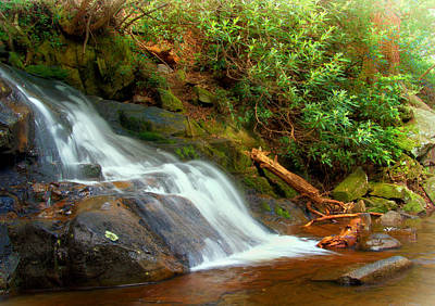 Photograph - Base Of Laurel Falls by Carolyn Derstine