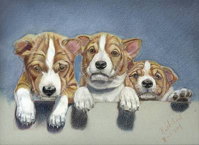Basenji Puppies Art Print