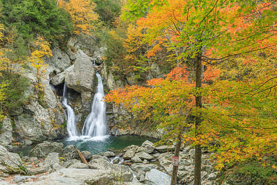 Forest Photograph - Bash Bish Falls Autumn by Bill Wakeley