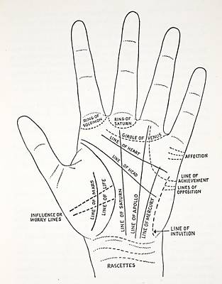 Finger Drawing - Basic Lines And Lesser Lines Of The Hand by English School