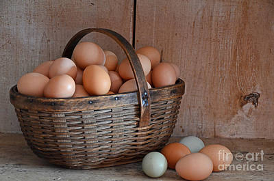 Basket Full Of Eggs Art Print