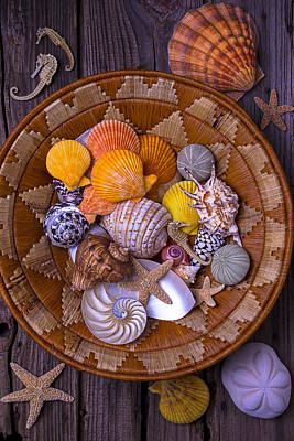 Seahorse Photograph - Basket Full Of Seashells by Garry Gay