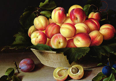 Plum Painting - Basket Of Apricots by Louise Moillon